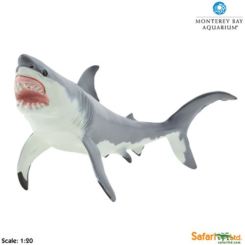 Shark Toys Great White : Safari ltd great white shark monterey bay aquarium
